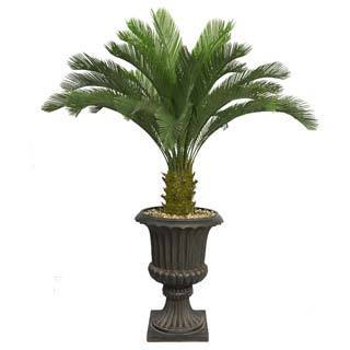 "Laura Ashley 62"" Tall Cycas Palm Tree in 16"" Fiberstone Planter"