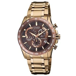 Citizen Men's Perpetual Chronograph Stainless Steel Watch