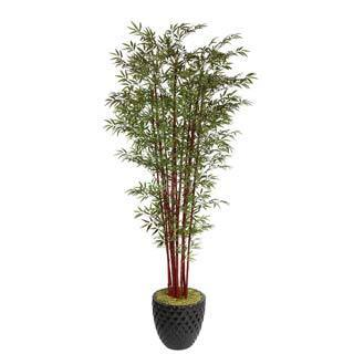 "Laura Ashley 98"" Tall Harvest Bamboo Tree in 16"" Fiberstone Planter"