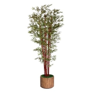"Laura Ashley 97"" Tall Harvest Bamboo Tree in 16"" Fiberstone Planter"