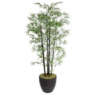 "Laura Ashley 78"" Tall Black Bamboo Tree in 16"" Fiberstone Planter"