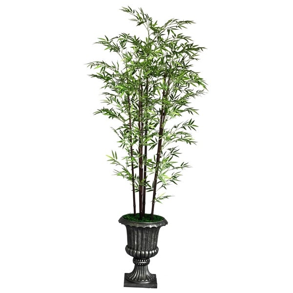 "Laura Ashley 86"" Tall Black Bamboo Tree in 16"" Fiberstone Planter 11857659"