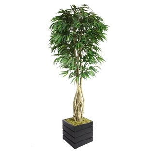 "Laura Ashley 84"" Tall Willow Ficus with Multiple Trunks in 14"" Fiberstone Planter"