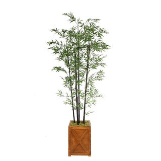Laura Ashley 81-inch Black Bamboo Tree in 13-inch Fiberstone Planter