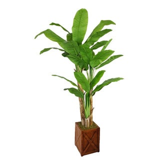 Laura Ashley 81-inch Tall Banana Tree with Real Touch Leaves in 13-inch Fiberstone Planter