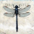 'Amberton Publishing Dragonfly' Canvas Art