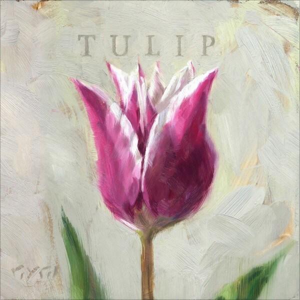 'Amberton Publishing Pink & White Tulip' Canvas Art