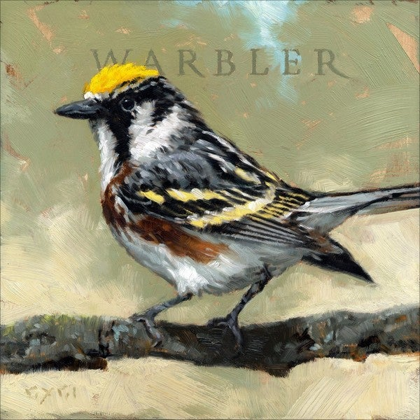 'Amberton Publishing Warbler Bird' Canvas Art
