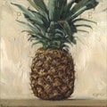 'Amberton Publishing Pineapple' Canvas Art