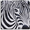 'Zebra perspective' Hand Painted Canvas Art