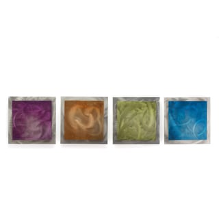 Belle 'Seasonal Essence' Rainbow Color Metal Wall Art