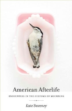 American Afterlife: Encounters in the Customs of Mourning (Hardcover)