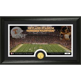 University of Tennessee Stadium Bronze Coin Panoramic Photo