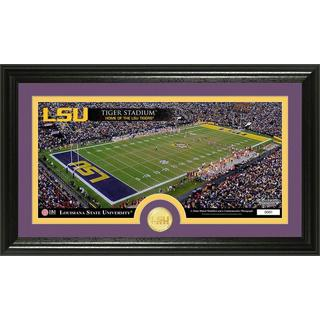 Louisiana State University Stadium Bronze Coin Panoramic Photo