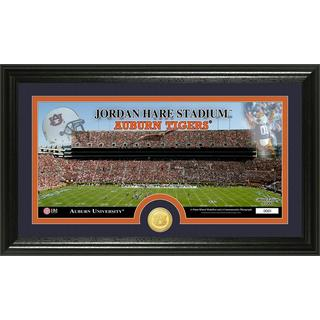 "Auburn University ""Stadium"" Bronze Coin Panoramic Photo Mint"