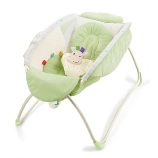 Taggies Snuggle Me Sleeper Bassinet
