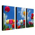 CATeyes 'Heaven' 3-piece Canvas Art