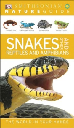 Nature Guide: Snakes and Other Reptiles and Amphibians (Paperback)