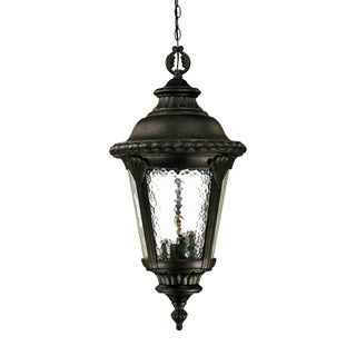 Surrey Collection Hanging Lantern 4-Light Outdoor Black Gold Light Fixture