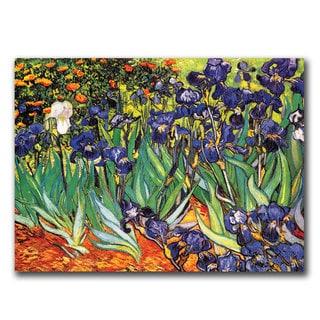 Vincent van Gogh 'Irises at Saint-Remy' Canvas Art