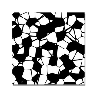 Unknown 'Crystals of Black and White' Canvas Art
