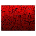 Unknown 'Crystal Reds' Canvas Art