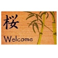 "Asian Welcome-Coir with Vinyl Backing Doormat (17"" x 29"")"