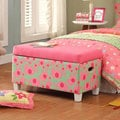 Deluxe Fun Pink/ Green Storage Bench