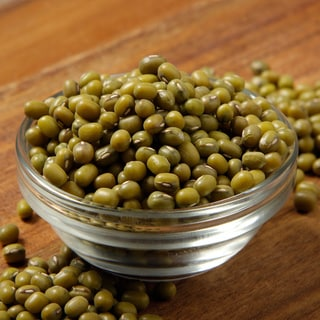 The Sprout House Organic Mung Bean Sprouting Seeds (5 pound)