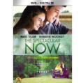 The Spectacular Now (DVD)