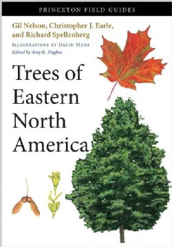 Trees of Eastern North America (Paperback)