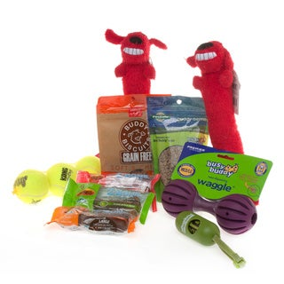 Dog Treats 'n Toys Gift Set for Medium/Large Breeds