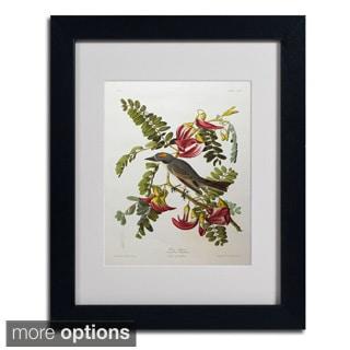 John James Audubon 'Gray Tyrant & Gray Kingbird' Framed Matted Art