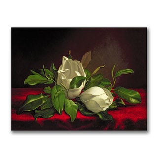 Martin Heade 'Magnolia' Canvas Art