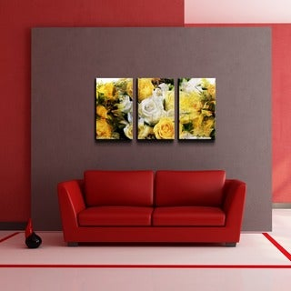Alexis Bueno 'Abstract Rose Study' 3-piece Canvas Wall Art
