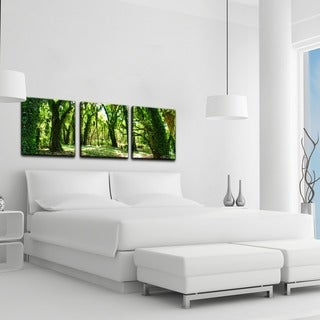 Chris Doherty 'Mystic Forest' 3-piece Canvas Wall Art