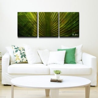 Alexis Bueno 'Palms' 3-piece Canvas Wall Art