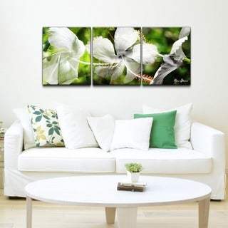 Alexis Bueno 'White Floral Study' 3-piece Canvas Wall Art