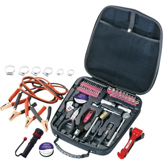 Apollo Pink 64-piece Travel and Automotive Tool Kit