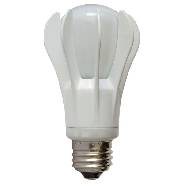GE General Purpose A19 Bulb