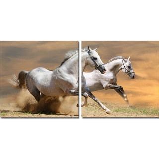 Baxton Studio Galloping Grandeur Mounted Photography Print Diptych