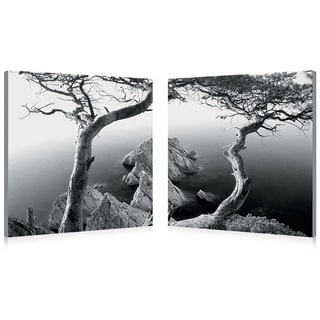 Rocky Shore Mounted Photography Print Diptych