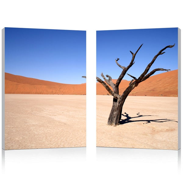 Desert Solitude Mounted Photography Print Diptych