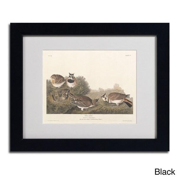John James Audubon 'Shore Lark' Framed Matted Art