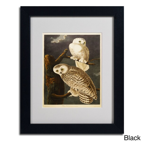 John James Audubon 'Snowy Owl' Framed Matted Art