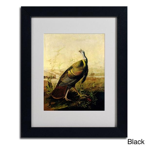 John James Audubon 'American Wild Turkey Cock' Framed Matted Art