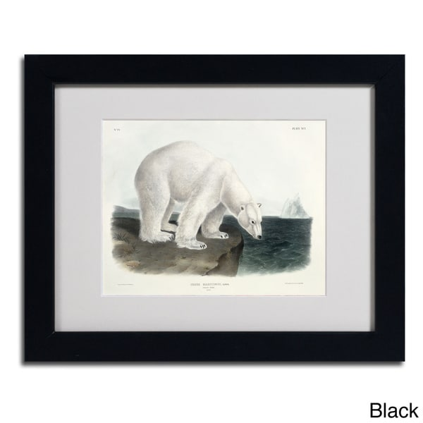 John James Audubon 'Ursus Maritimus Polar Bear' Framed Matted Art