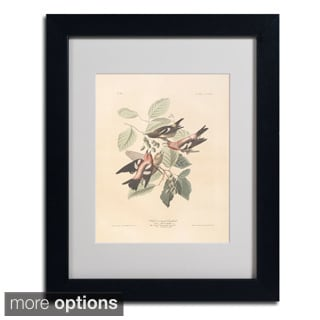 John James Audubon 'White-Winged Crossbill' Framed Matted Art