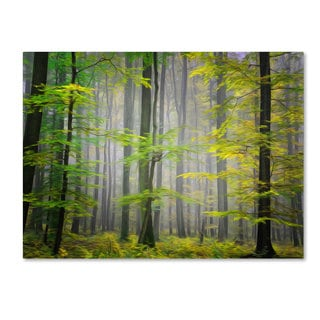 Philippe Sainte-Laudy 'Sugar Low' Canvas art
