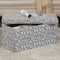Large Zebra Print Storage Bench